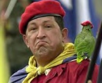 hugo_chavez_parrot1