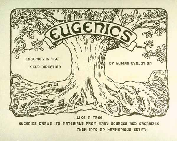 eugenics-tree-U-MI