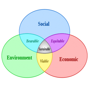 "Agenda 21 ""sustainable development"" model"