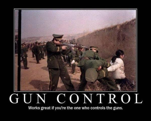 guncontrol102913