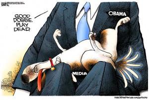 medialapdog